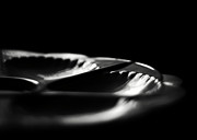 Light And Dark  Prints - The Czech Oyster Plate Print by Rebecca Sherman
