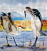 Anderson R Moore - The Dance - Sandhill Cranes