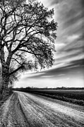 Kansas Framed Prints - The Dirt Road in Black and White Framed Print by JC Findley