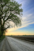 Country Dirt Roads Photo Prints - The Dirt Road Print by JC Findley