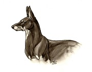 Doberman Pinscher Paintings - The Doberman Pinscher by Jessica Pryor