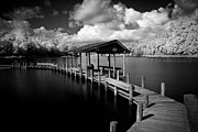 Bruce Photos Prints - The Dock at Lake Atigahi Print by Bruce Siulinski
