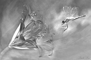 Amaryllis Art - The Dragonfly and the Flower by Linda Lees