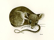 Lori Ziemba Prints - The Dreaming Mouse Print by Lori Ziemba