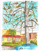 Urban  Drawings Paintings - The dry tree in the yellow house - Hollywood - California by Carlos G Groppa