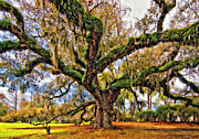 Live Oaks Digital Art Framed Prints - The Dueling Oak painted Framed Print by Steve Harrington