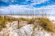 Beachscapes Posters - The Dunes Poster by Debra and Dave Vanderlaan