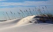 Beach Theme Framed Prints - The Dunes of Destin Framed Print by JC Findley
