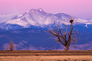 Colorado Front Range Photos - The Eagles and The Peaks by Bryce Bradford
