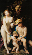 Fine Art  Of Women Painting Posters - The Education of Cupid Poster by Correggio