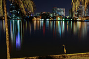 American Airlines Arena Prints - The Egrets View Print by Rene Triay Photography