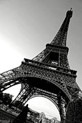 Steel Photos - The Eiffel Tower by Olivier Le Queinec