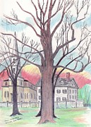 Paul Drawings - The Elm Trees John Brown House by Paul Meinerth
