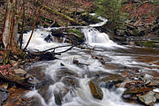 Conestoga Photos - The Elusive Conestoga Waterfall by Gene Walls