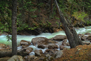 Brooks Photos - The Emerald Stream by Tim Reaves