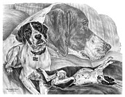 Kelly Drawings Posters - The English Major - English Pointer Dog Poster by Kelli Swan