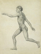 Medicine Drawings Posters - The Entire Human Figure from the Left lateral view Poster by George Stubbs
