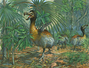 Dodo Bird Posters - The Extinct Dodo Bird Poster by ACE Coinage painting by Michael Rothman