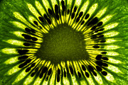 Kiwis Prints - The Eye Print by Gert Lavsen