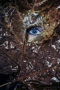 Hiding Metal Prints - The Eye Metal Print by Joana Kruse