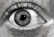 The Eye Print by Luke Moore