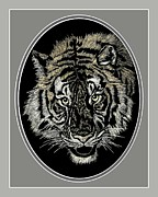Pi Drawings Posters - The Eyes of the Tiger II Poster by Ronald Chambers