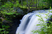 Poconos Art - The Falls at George W Childs Park by Bill Cannon