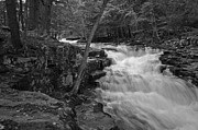 Poconos Art - The Falls by David Rucker