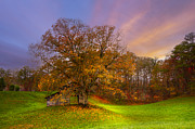 Autumn Scenes Metal Prints - The Farm Metal Print by Debra and Dave Vanderlaan