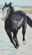 Wild Horse Pastels - The feel of the cool air by Jeanne Fischer