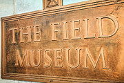 Chicago Museums Prints - The Field Museum Sign in Chicago Illinois Print by Paul Velgos