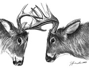 White-tail Deer Prints - The Fight Print by J Ferwerda