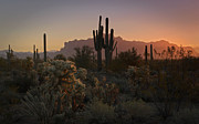Southwest Landscape Metal Prints - The First Light  Metal Print by Saija  Lehtonen