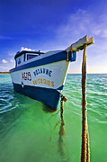 Pleasure Photos - The Fishing Boat Roxanne of Aruba by David Letts
