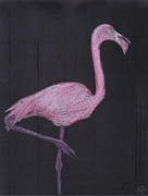 Flamingo Pastels Framed Prints - the Flamingo Framed Print by George Pedro