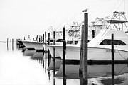 Fisherman Print Framed Prints - The Fleet Awaits - Outer Banks Framed Print by Dan Carmichael