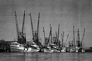 Antiques Prints - The Fleet Print by Debra and Dave Vanderlaan