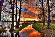 Country Scenes Photos - The Flooded Sunset Path by Kim Shatwell-Irishphotographer