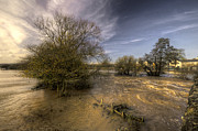 River Flooding Photo Posters - The Floods at Stoke Canon  Poster by Rob Hawkins