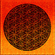 New Age Digital Art Prints - The Flower Of Life Print by Steve Thorpe