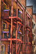 Fire Escapes Posters - The Flower Pots on the Patio Poster by Paul Ward