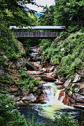 New Hampshire Posters - The Flume Poster by Heather Applegate