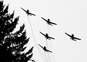Planes Acrylic Prints - The Fly Past Acrylic Print by Chris Dutton