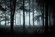 Haunted Forest Framed Prints - The Fog Framed Print by Ian Hufton