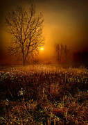 Fall Leaves Photos - The Fog by Phil Koch