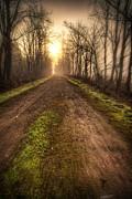 Spencer McDonald - The Foggy Trail