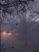 Guy Ricketts Photography And Art Posters - The Foggy Veil Poster by Guy Ricketts