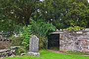 Jane McIlroy - The Fortingall Yew - Perthshire - Scotland