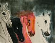 White Horses Pastels Framed Prints - The Four Horses Framed Print by Sean Mitchell