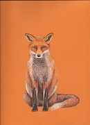 Fox Pastels Prints - The Fox Print by Nina Shilling